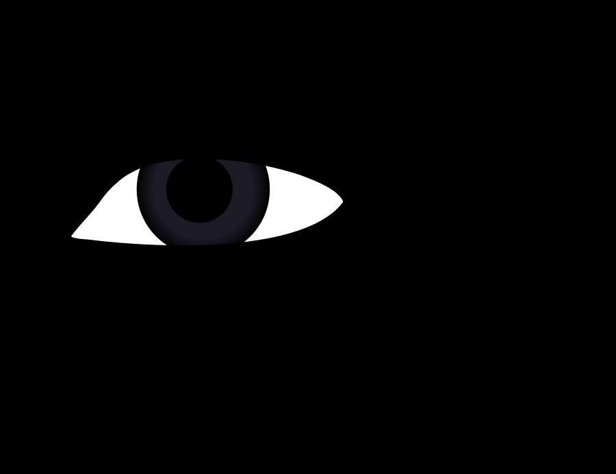 Eyeball eyes free images. Clipart eye sense