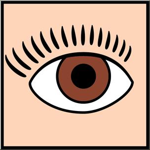 Clip art senses color. Eyeball clipart sense sight
