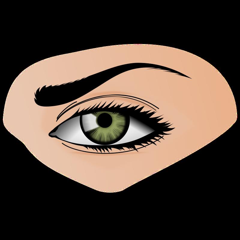 Eye medium image png. Eyes clipart sense