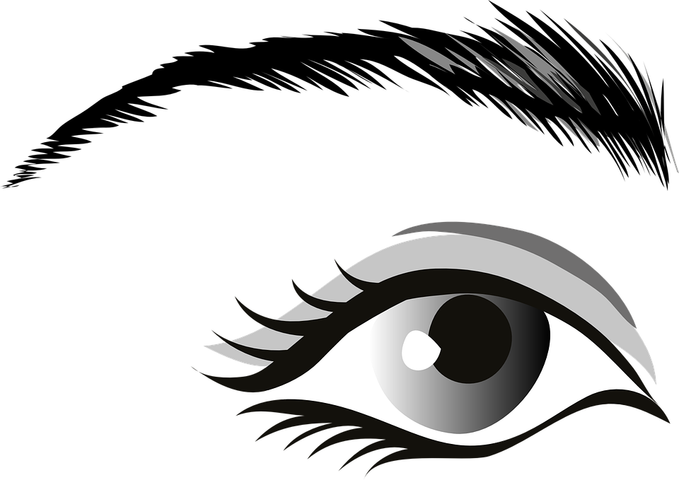 Grey eyes explore pictures. Eyebrow clipart kilay