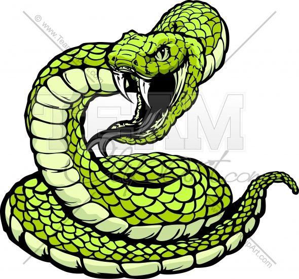 Cobra clipart coiled snake. Striking viper or panda