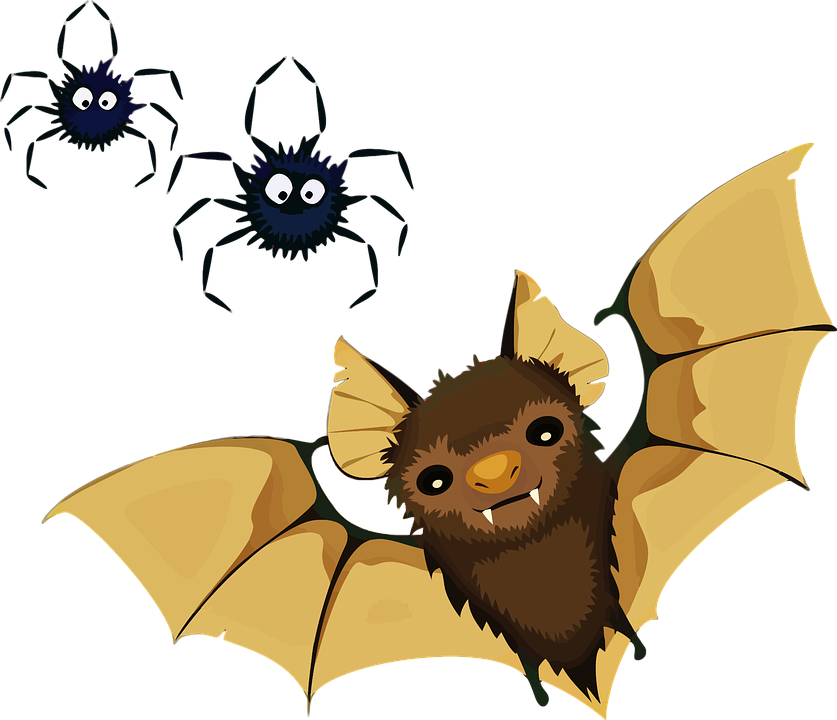 Library clipart halloween. Bats pictures shop of
