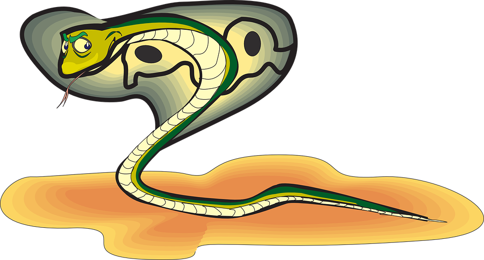 Cartoon snake cliparts shop. Clipart eyes cobra