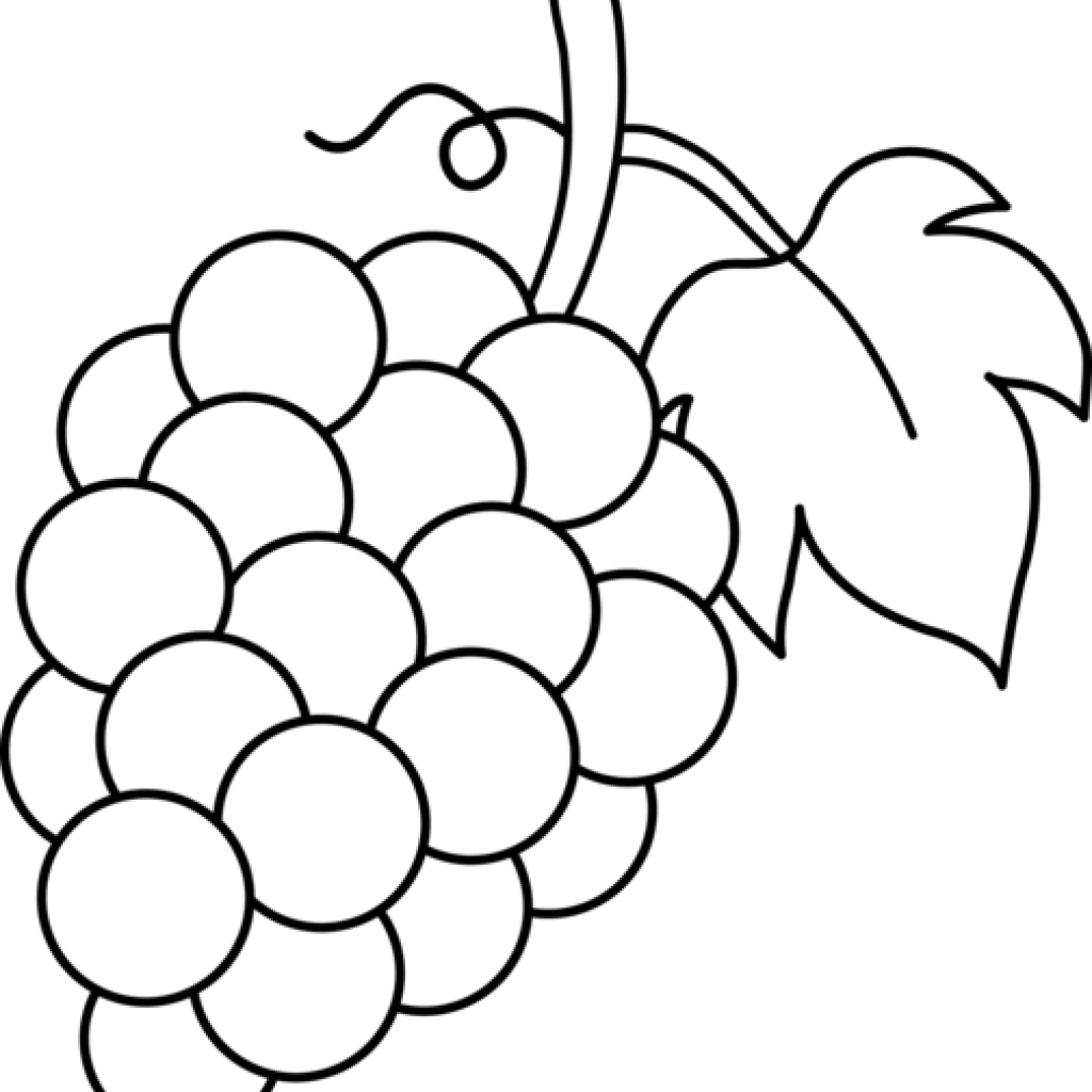 Grape clipart drawing. Grapes new year hatenylo
