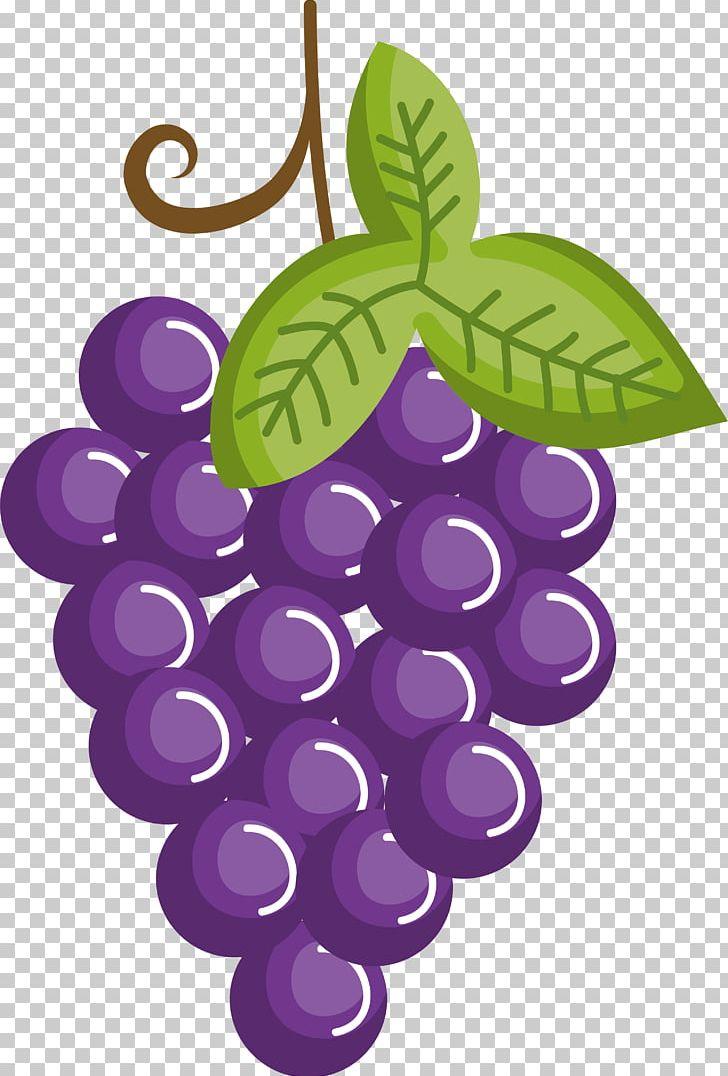 Drawing cartoon fruit png. Grape clipart eye
