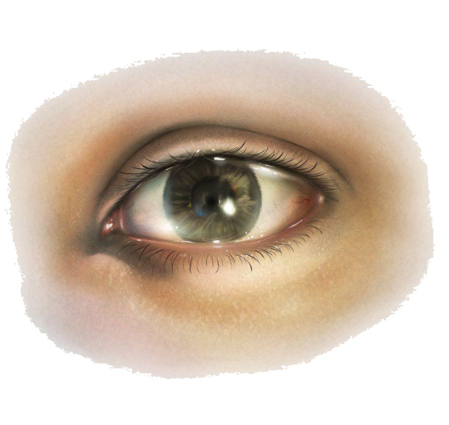 Clipart eyes human eye. Png image purepng free