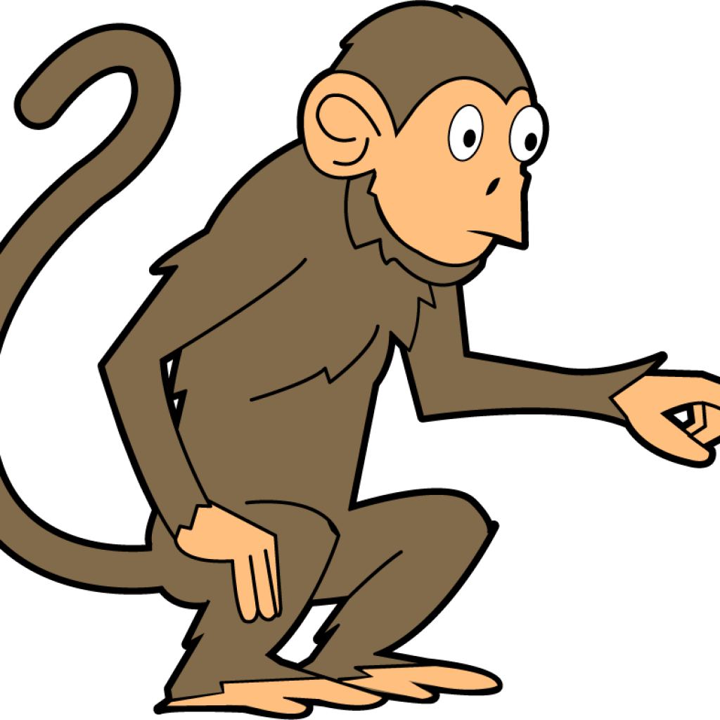 Rose hatenylo com download. Monkeys clipart spider monkey