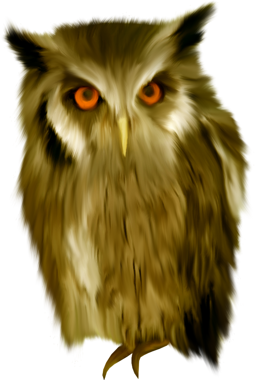 Computer Eye Glass: Owls Clipart Eye, Owls Eye Transparent FREE For Download