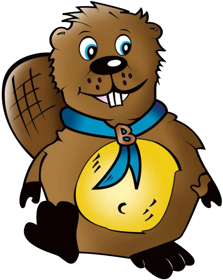 Website clipart animated.  collection of beaver