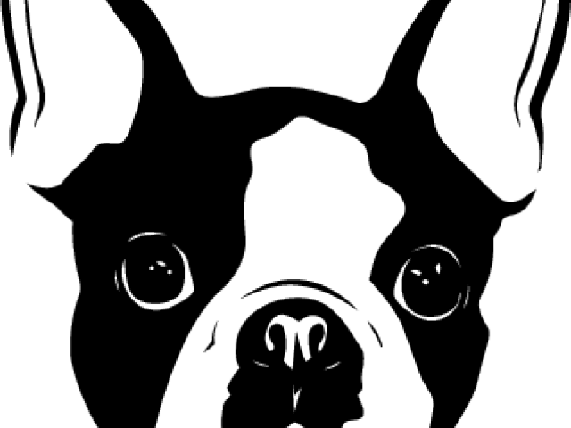 Clipart face boston terrier. Yorkshire cliparts free download