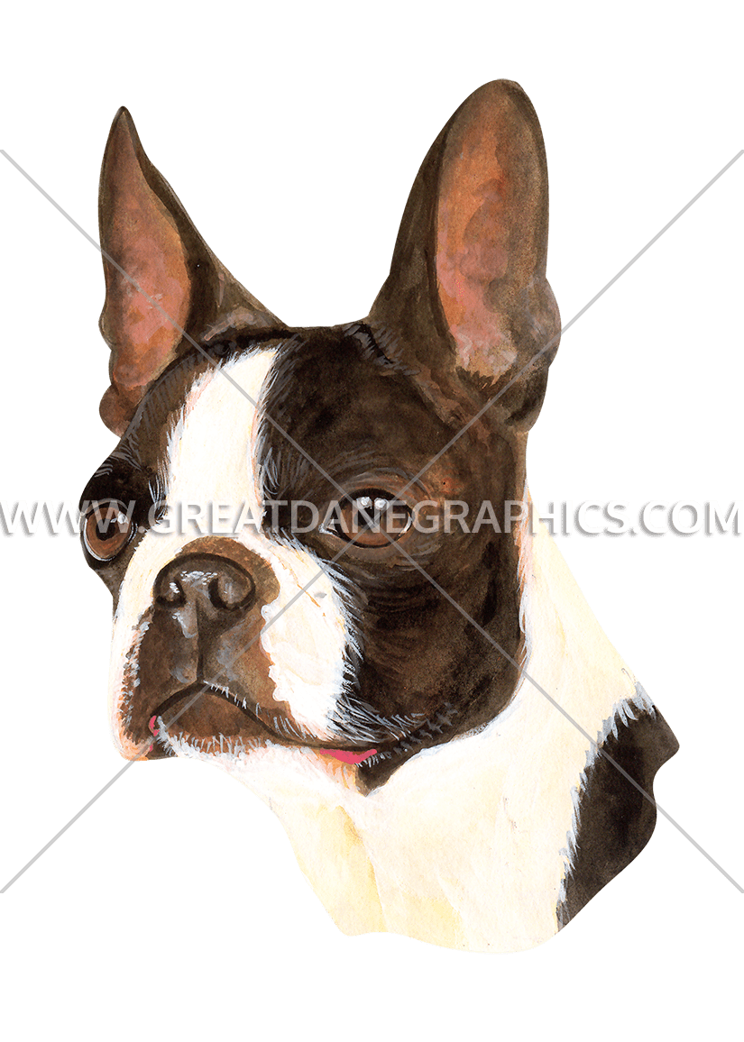 Production ready artwork for. Clipart face boston terrier