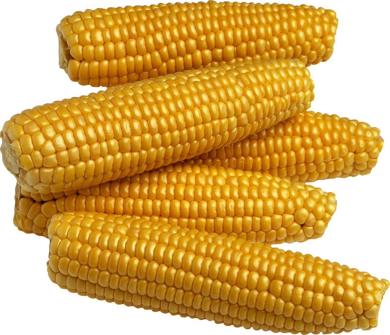 Flour clipart corn flour. Five isolated stock photo