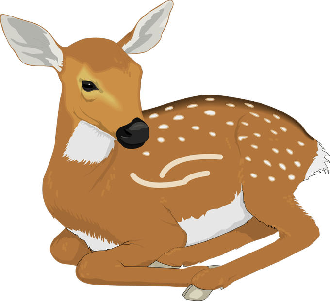 Woodland clipart deer. Images free siewalls co