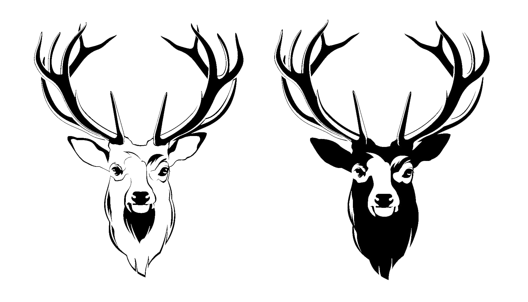 Face drawing at getdrawings. Hunting clipart deer head