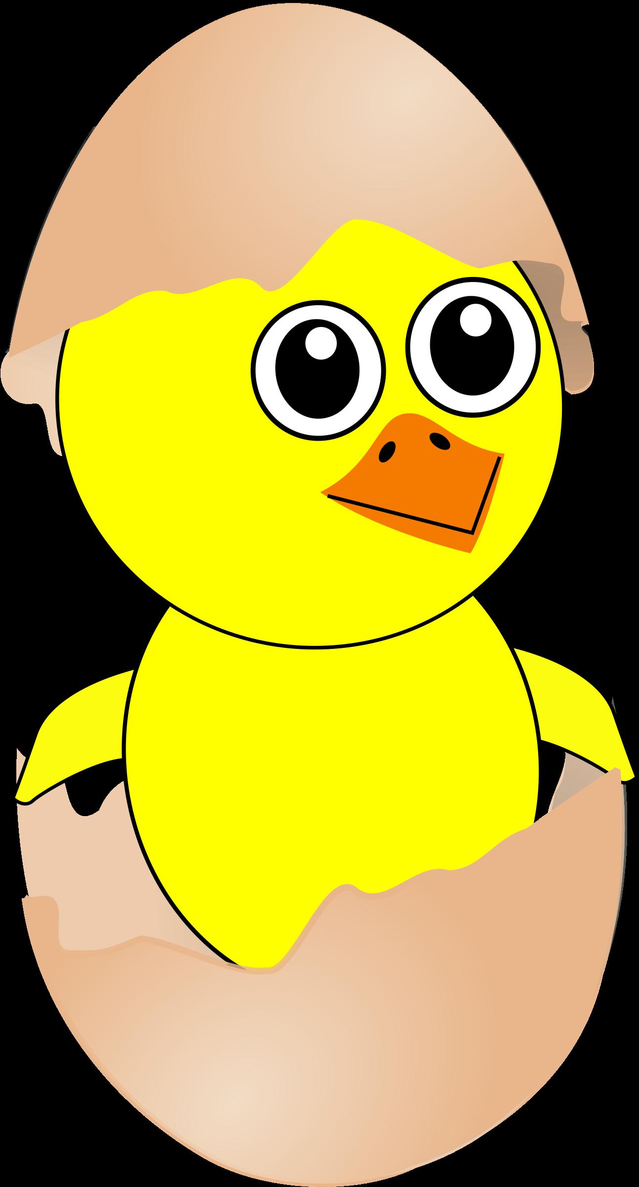Eggs clipart comic. Funny chick cartoon newborn