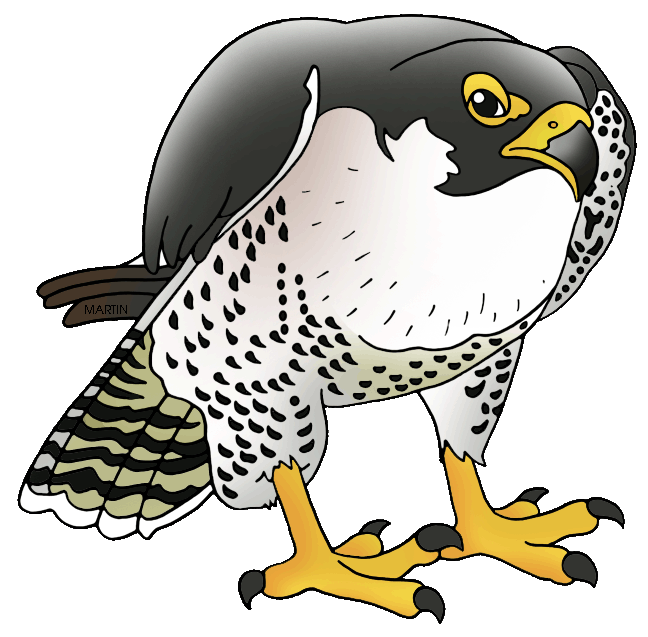 Falcon clipart falcon football. Peregrine clipartfest clipartix