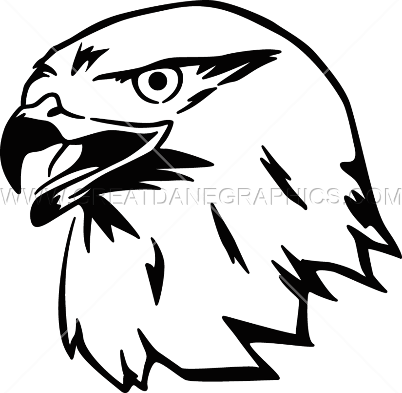 Production ready artwork for. Falcon clipart face