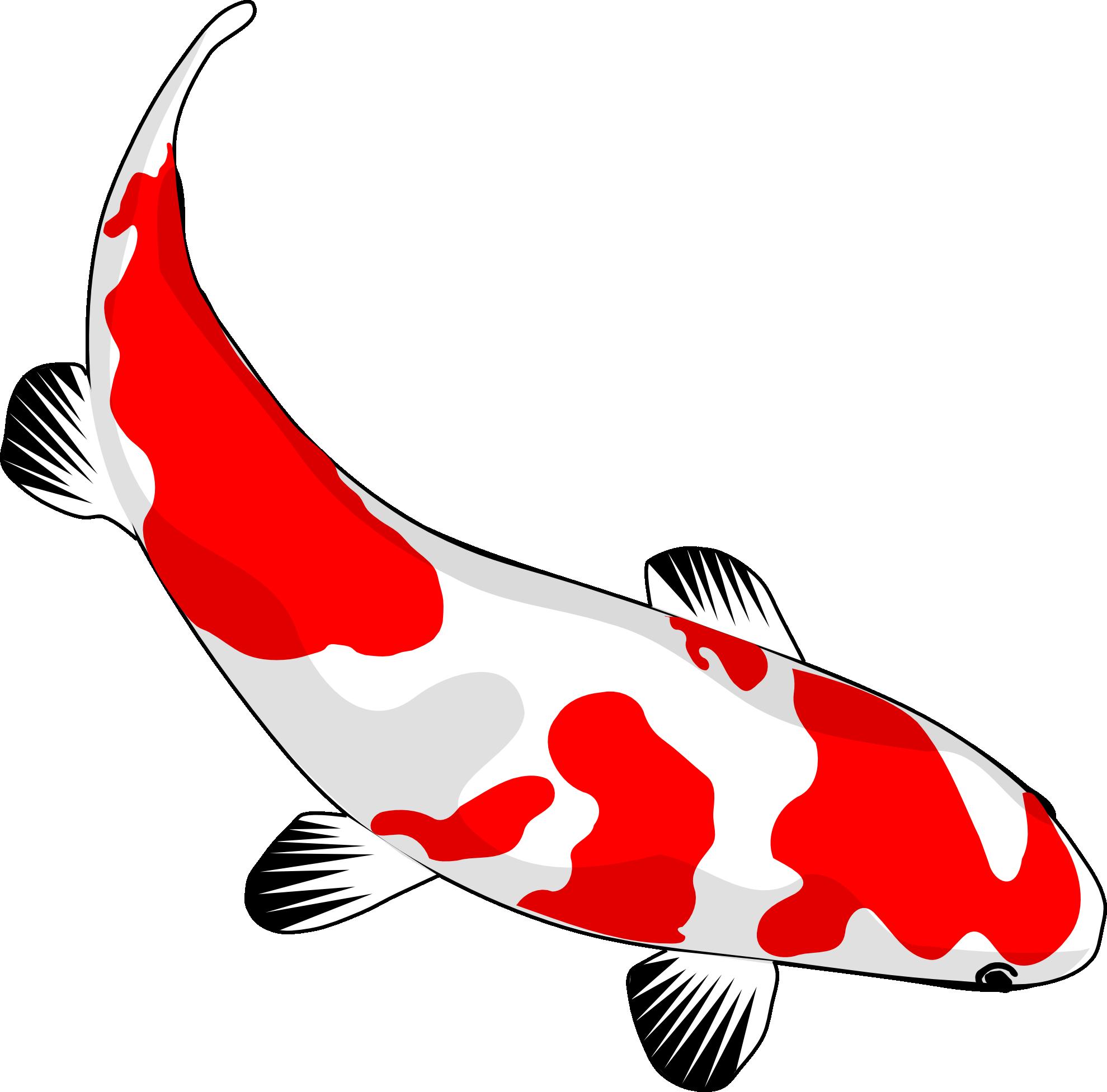 Japanese fish frames illustrations. Goldfish clipart vector