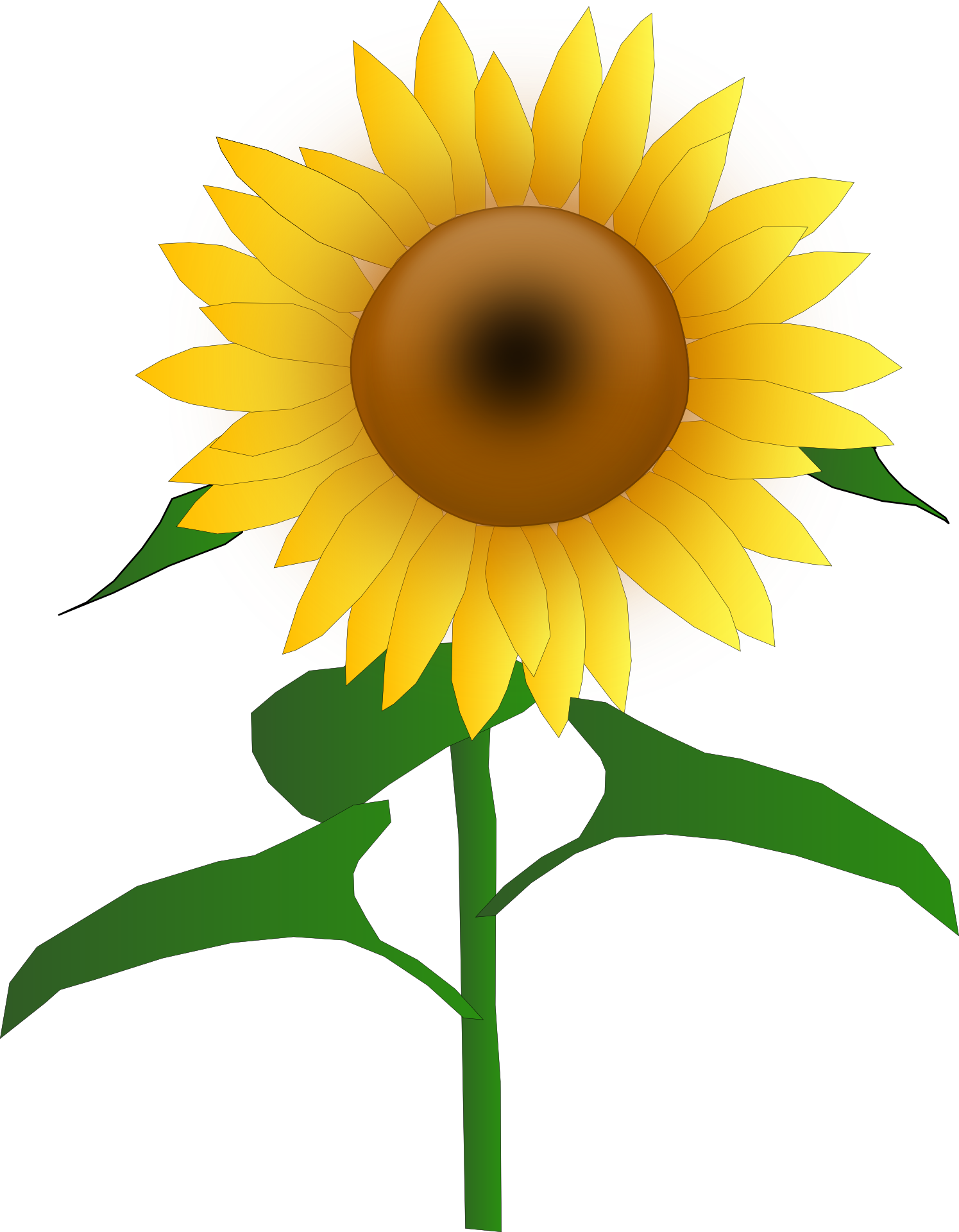 Free photo sunflower graphic. Face clipart flower