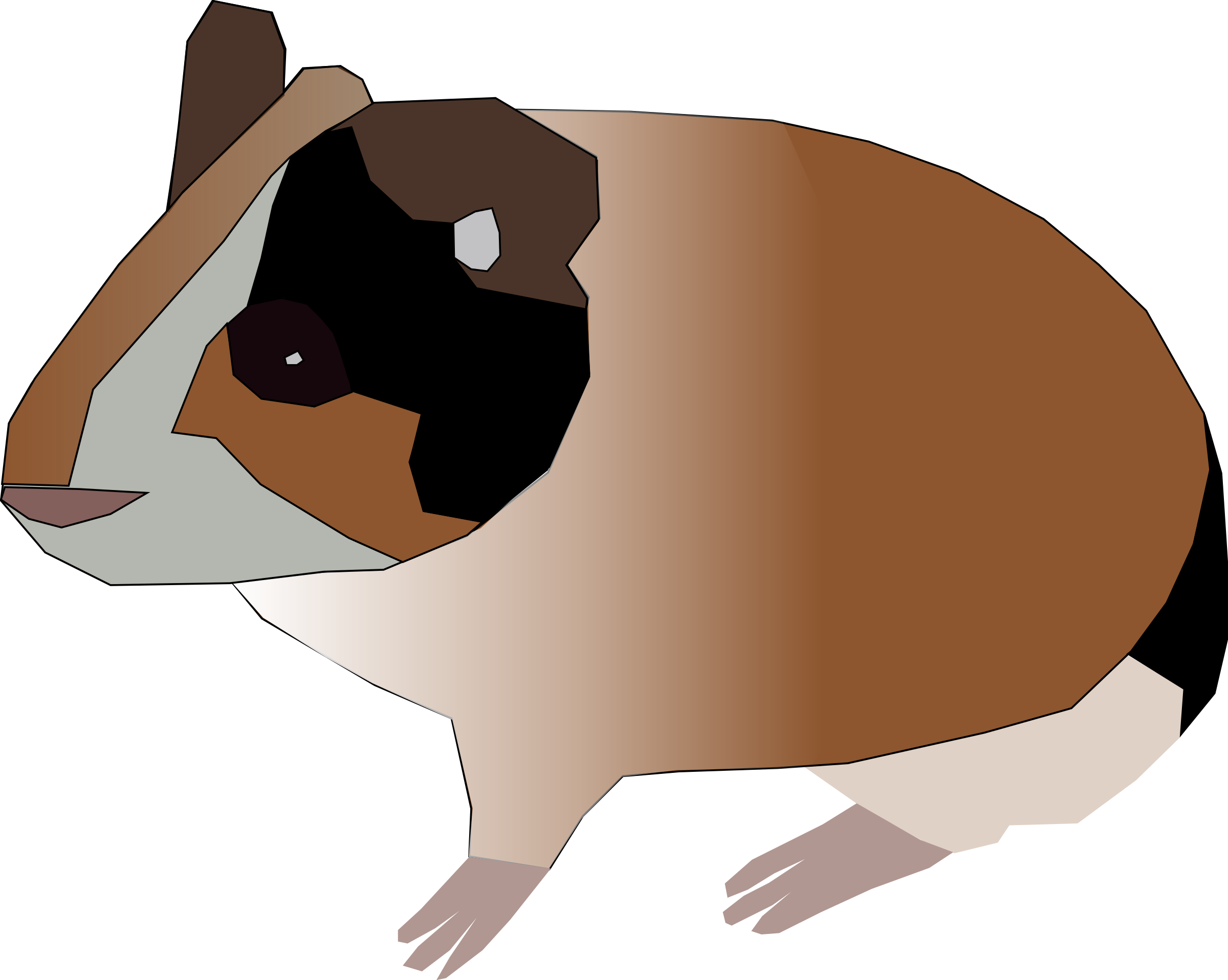 Clipart face guinea pig.  collection of png