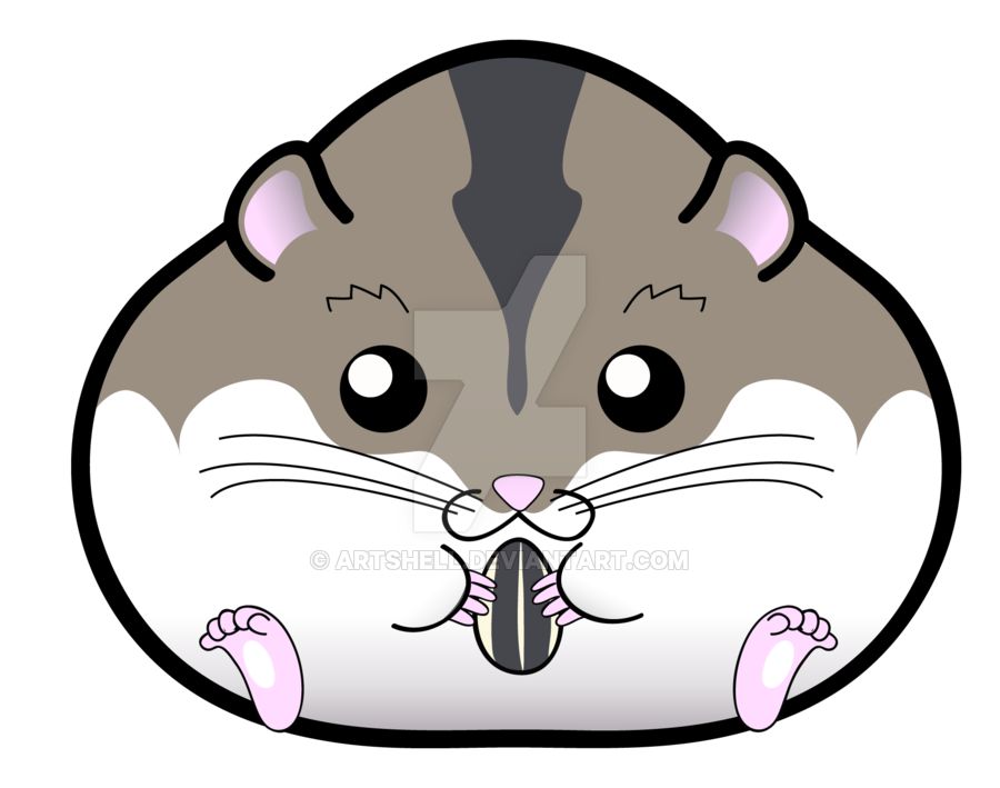 Cartoon drawing at getdrawings. Hamster clipart face