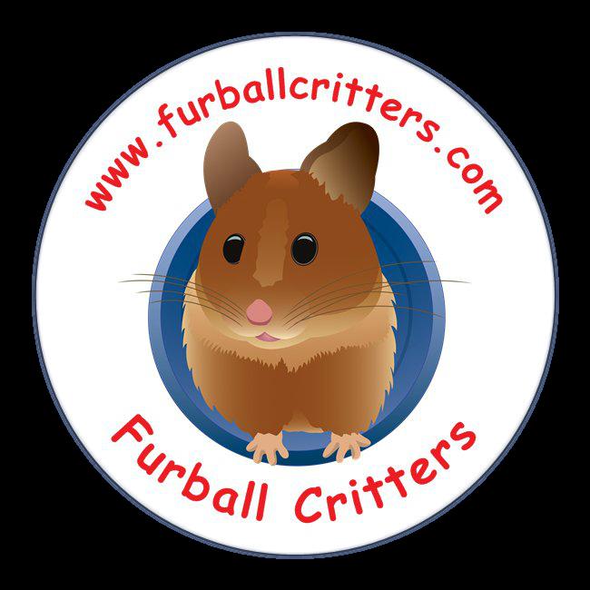 huge freebie download. Hamster clipart face