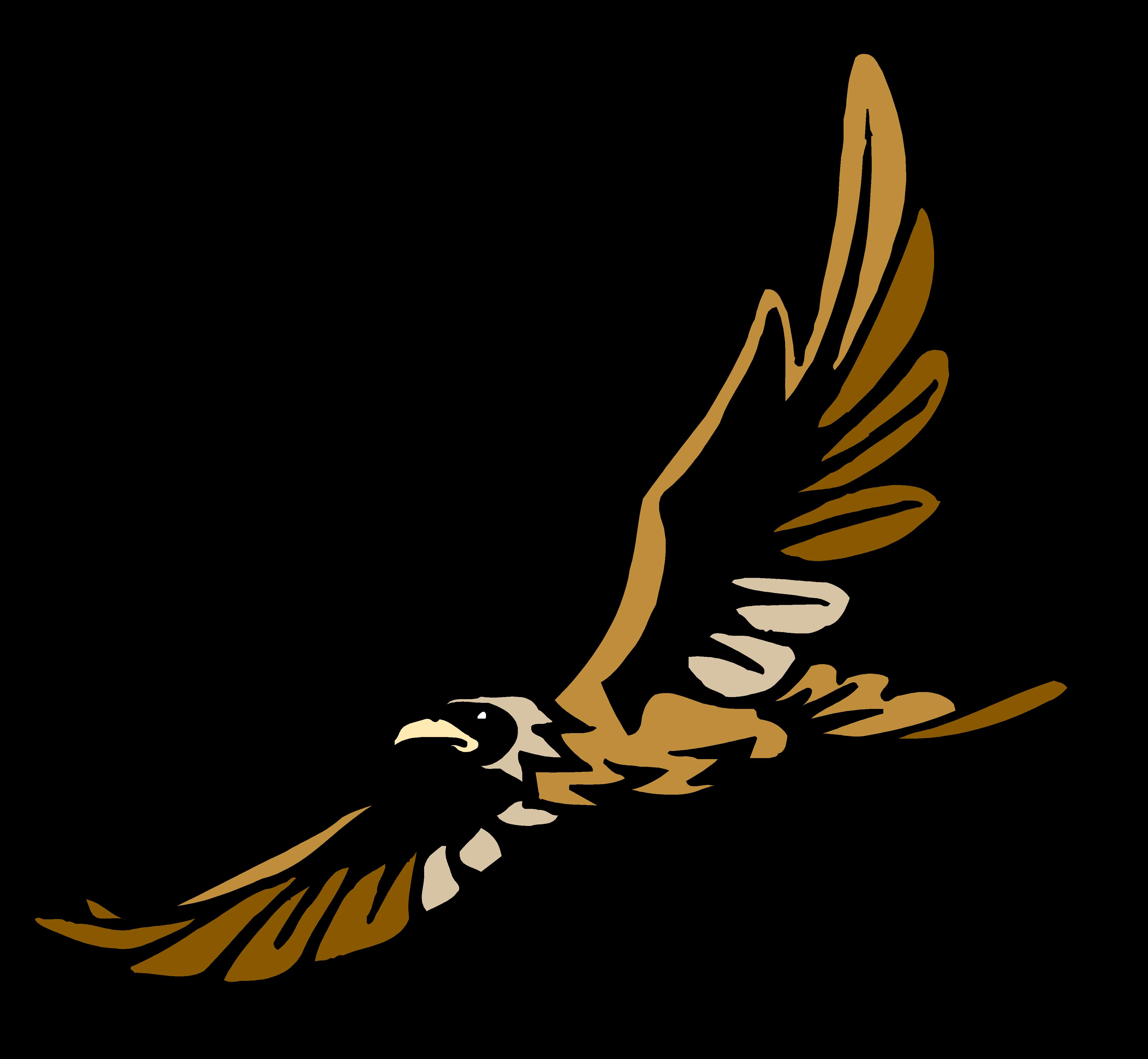 Falcon clipart hawk harris. Tertiary consumer free on