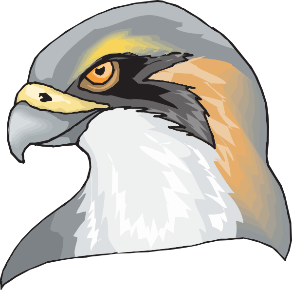 Hawk head clip art. Feet clipart eagle