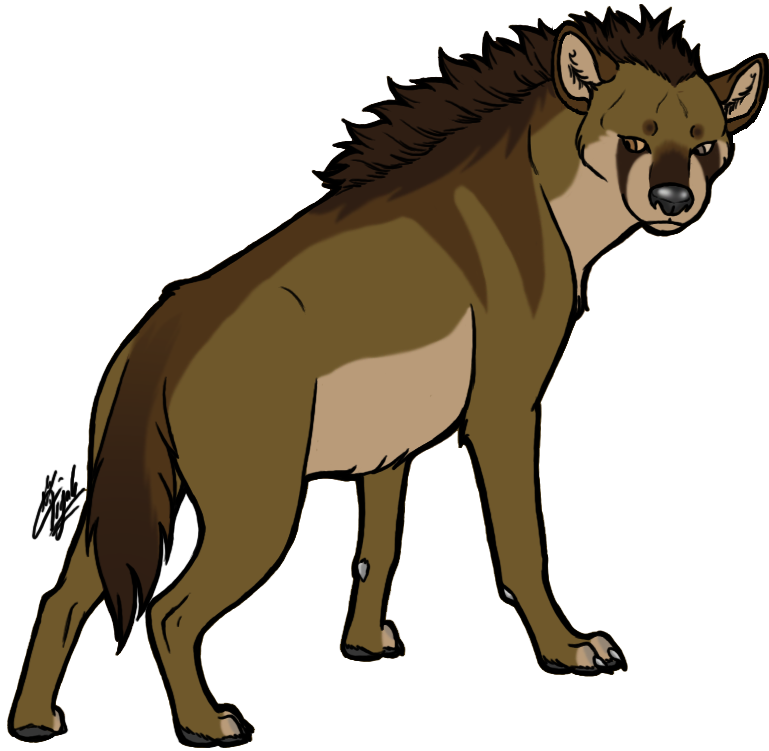 Head clipart hyena. Kayden deviantart honours project