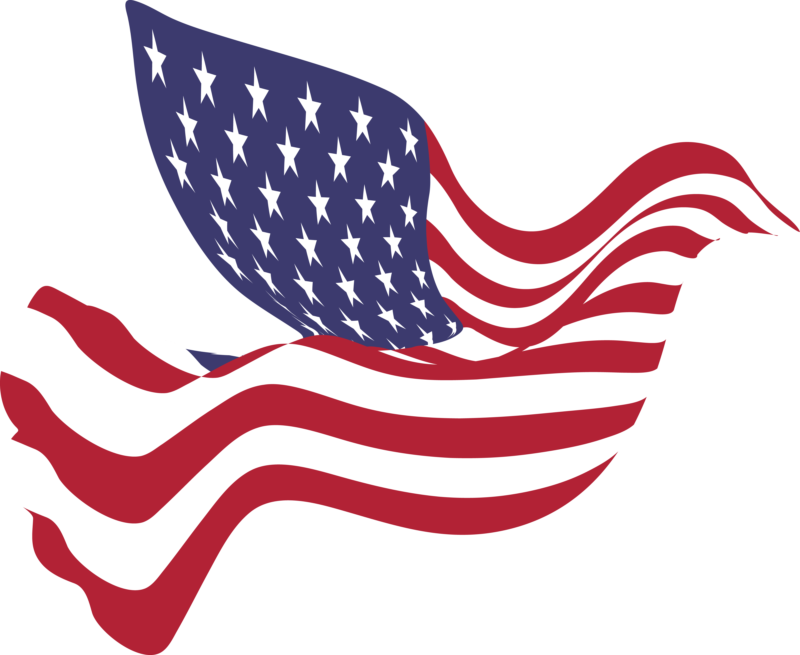 sunglasses clipart american flag #144748886
