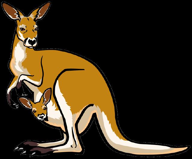 kangaroo clipart orange