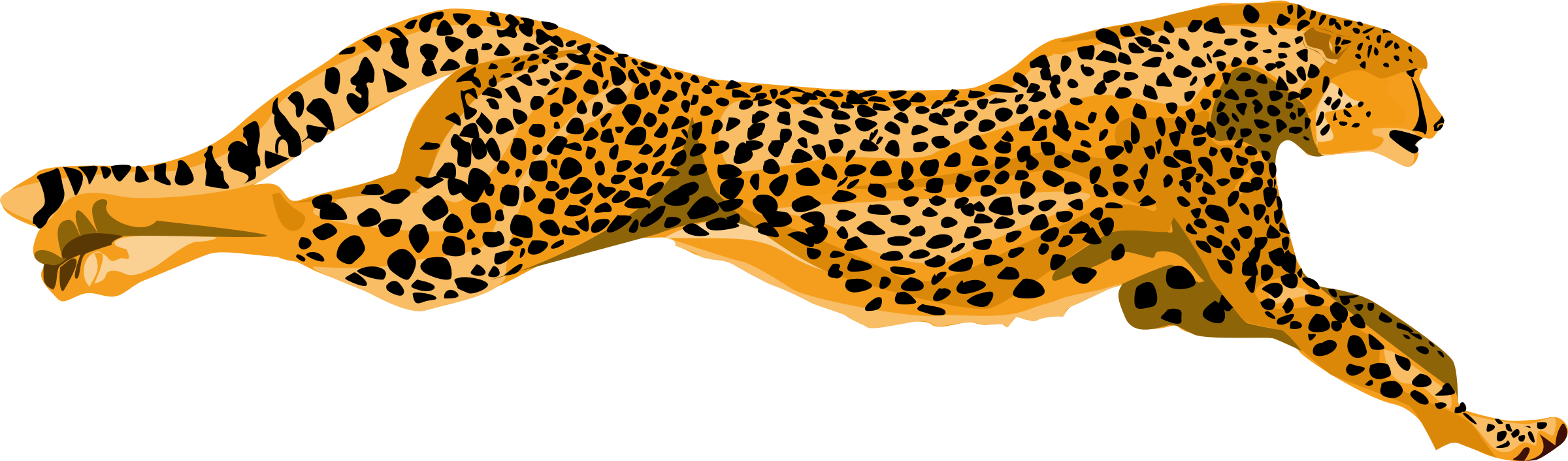 collection of images. Clipart face leopard
