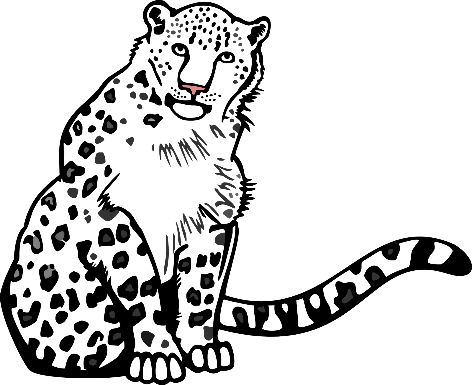 Jaguar clipart snow leopard.  collection of outline