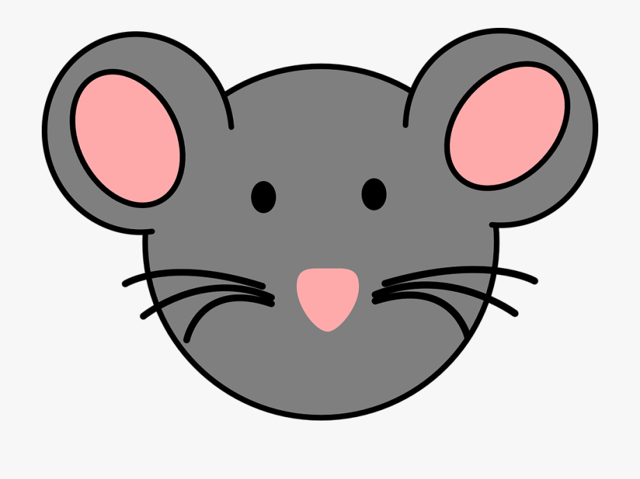 Rat mouse free . Mice clipart face