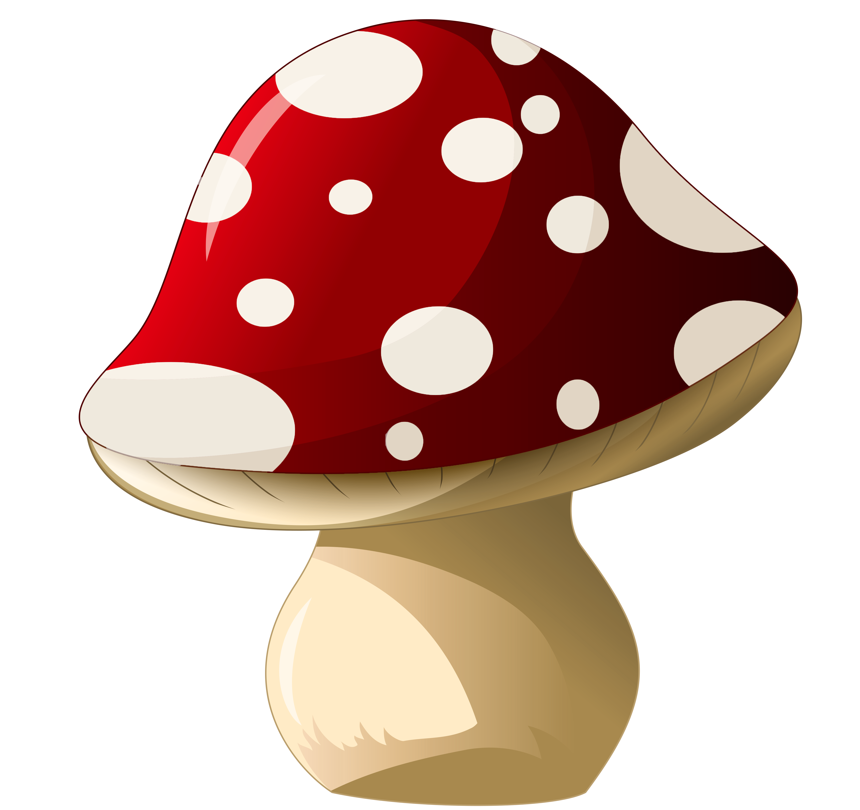 Png picture mushroompngclipartpicturepng . Gnome clipart mushroom