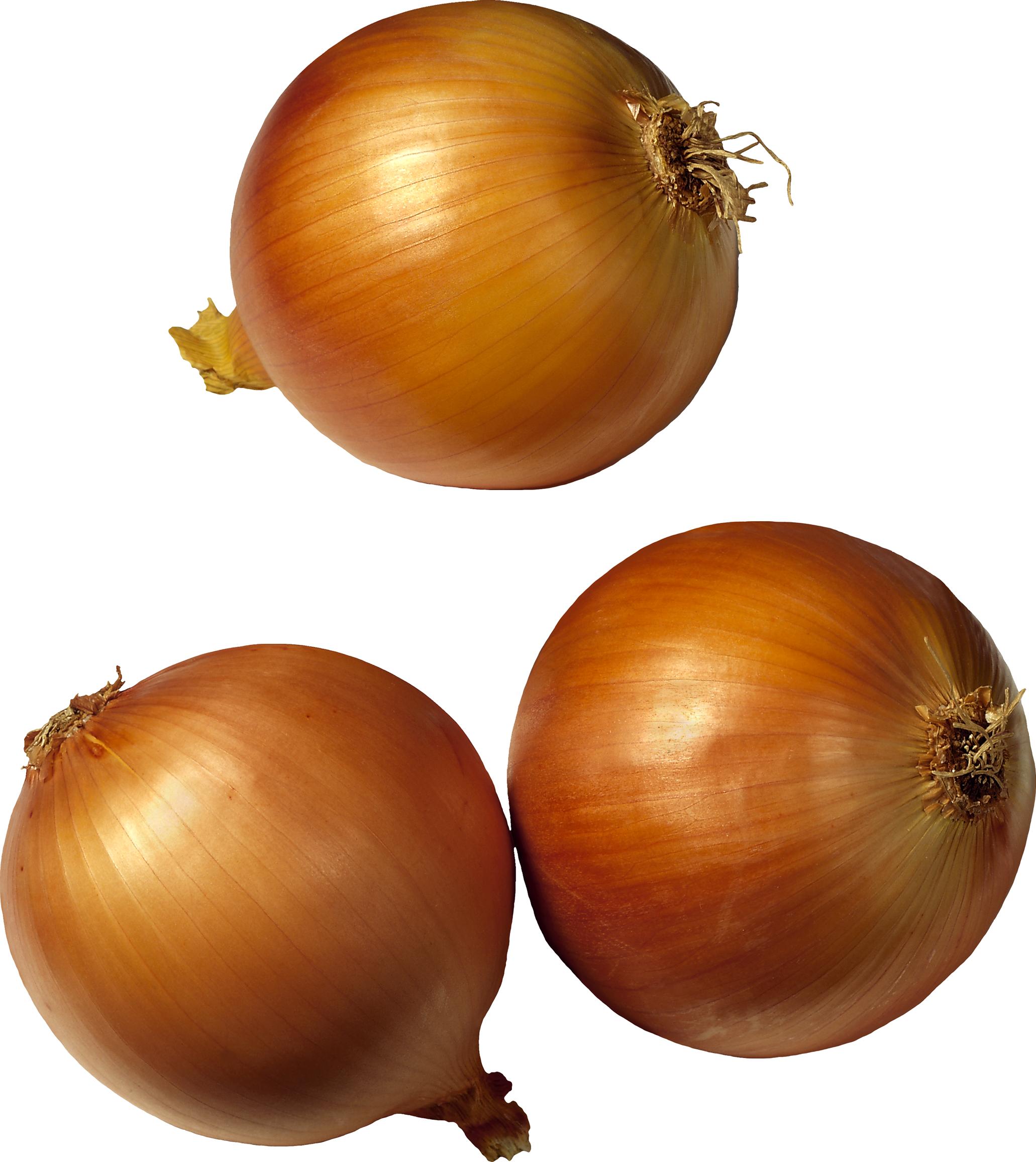 Twenty one isolated stock. Face clipart onion