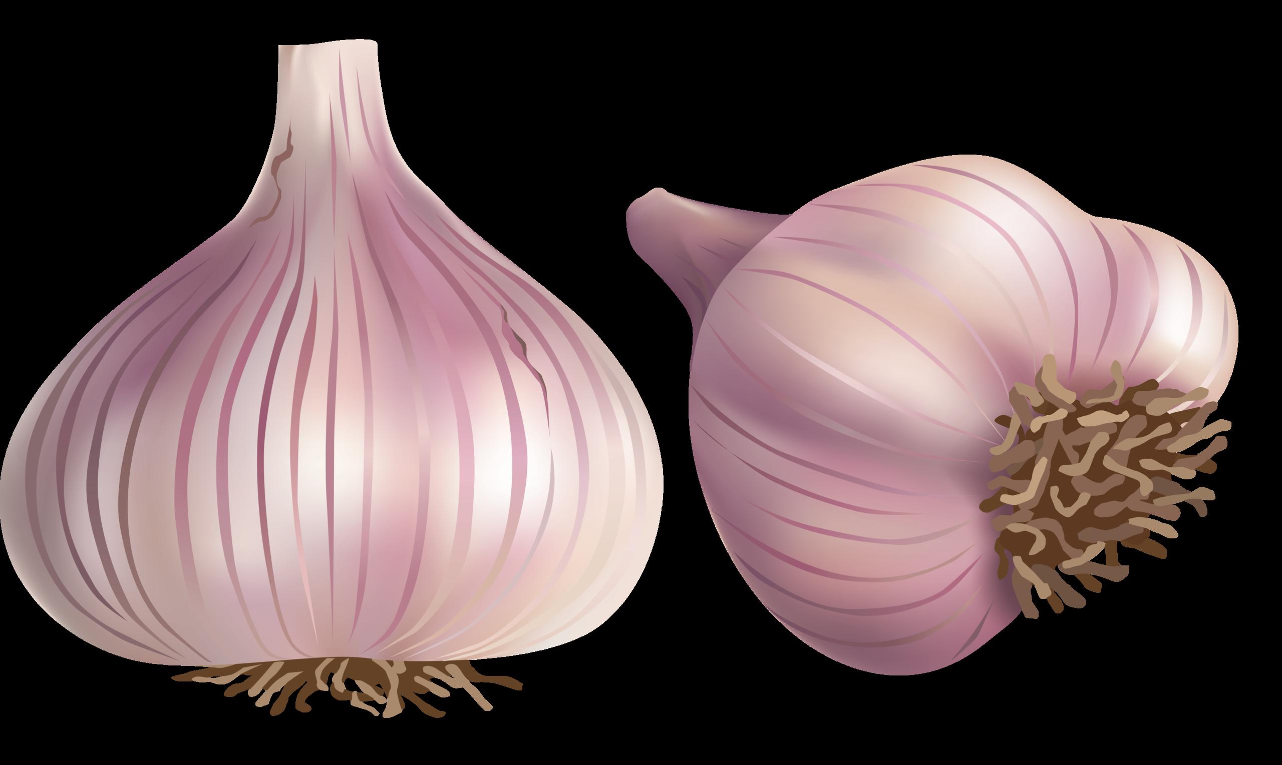 png pinterest clip. Face clipart onion