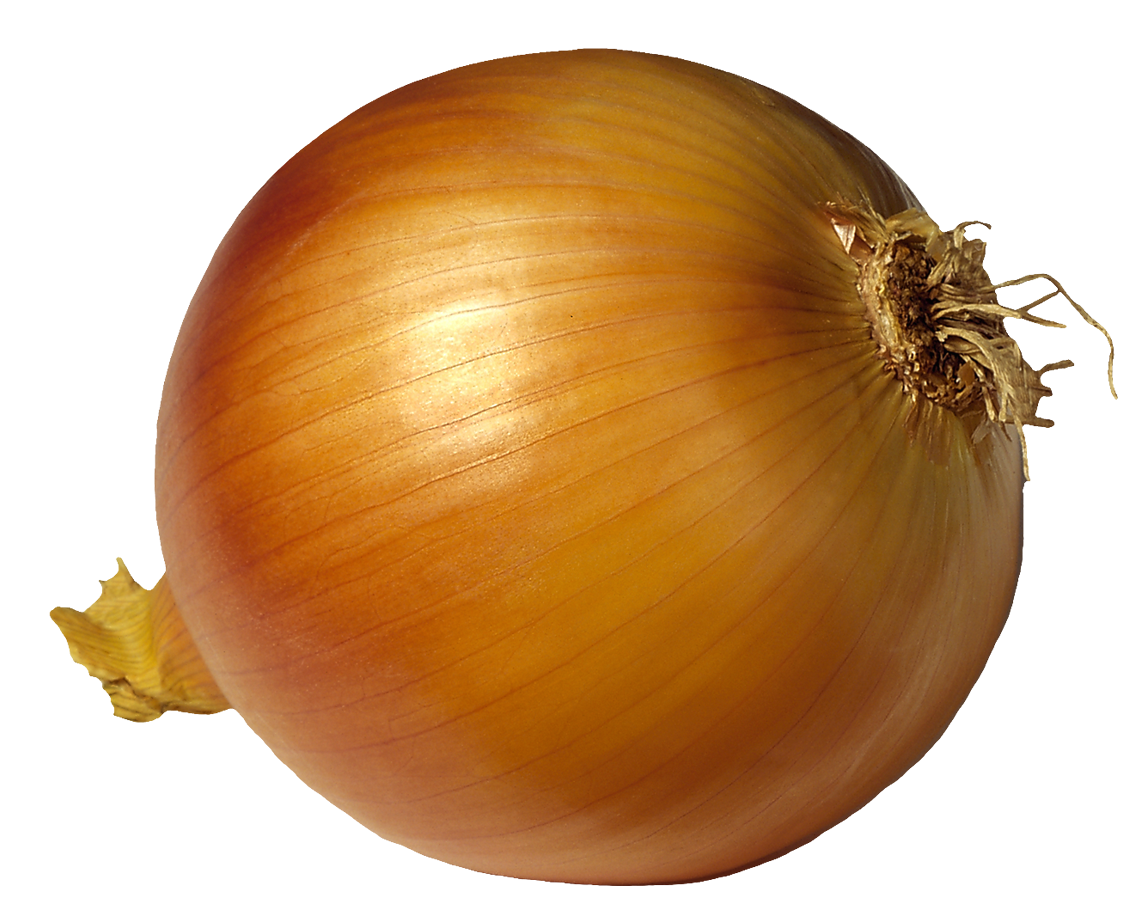Onion clipart red onion. Hd png transparent images