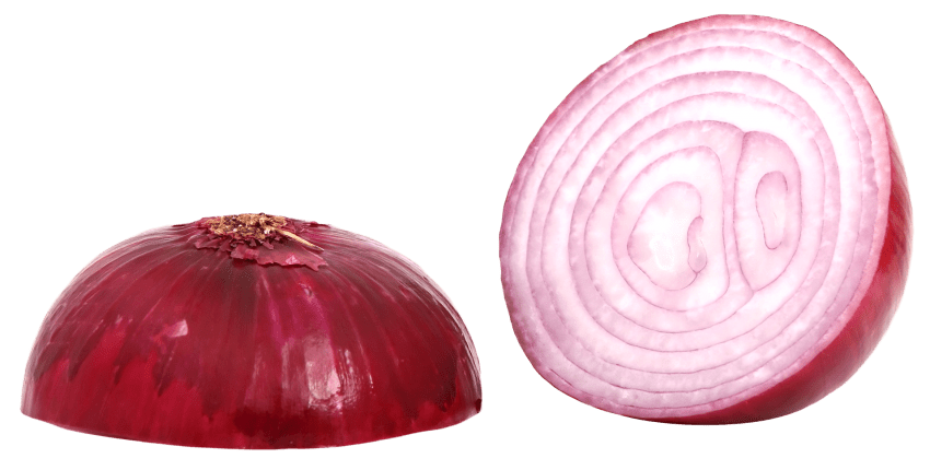 Sliced png free images. Onion clipart red onion