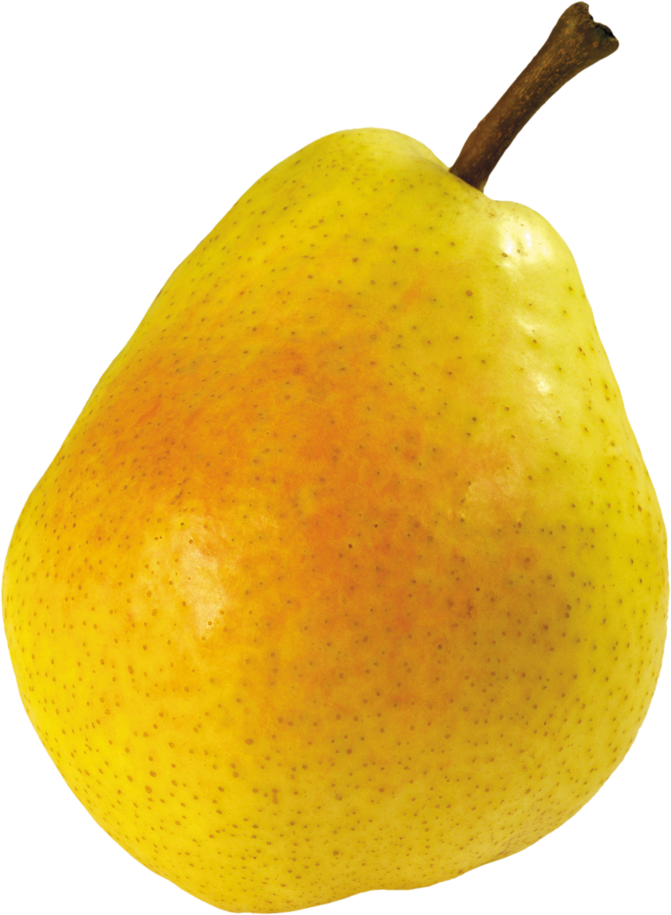 Pear clipart transparent background. Ten isolated stock photo