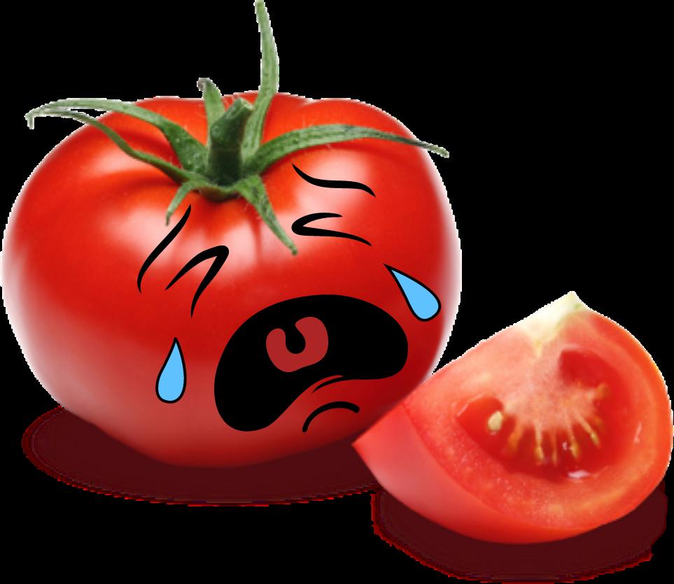 Tomatoes clipart fun. Tomatofunfaceyousaytomato adorable red cute