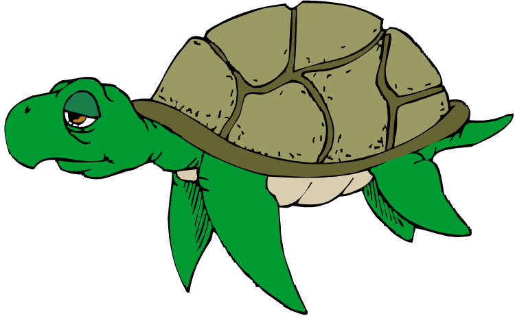 Free clipartix . Clipart turtle face
