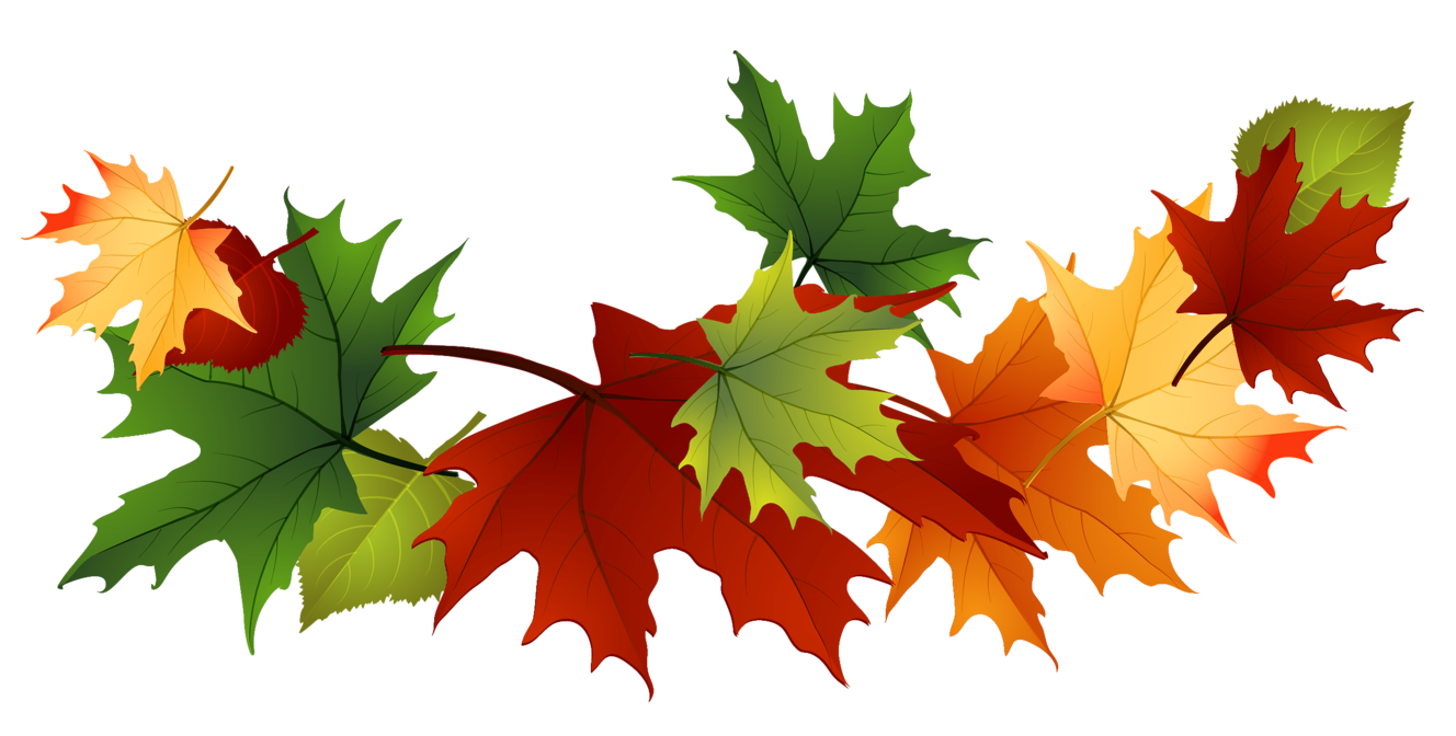 Fall leaves border png. Free autumn clip art