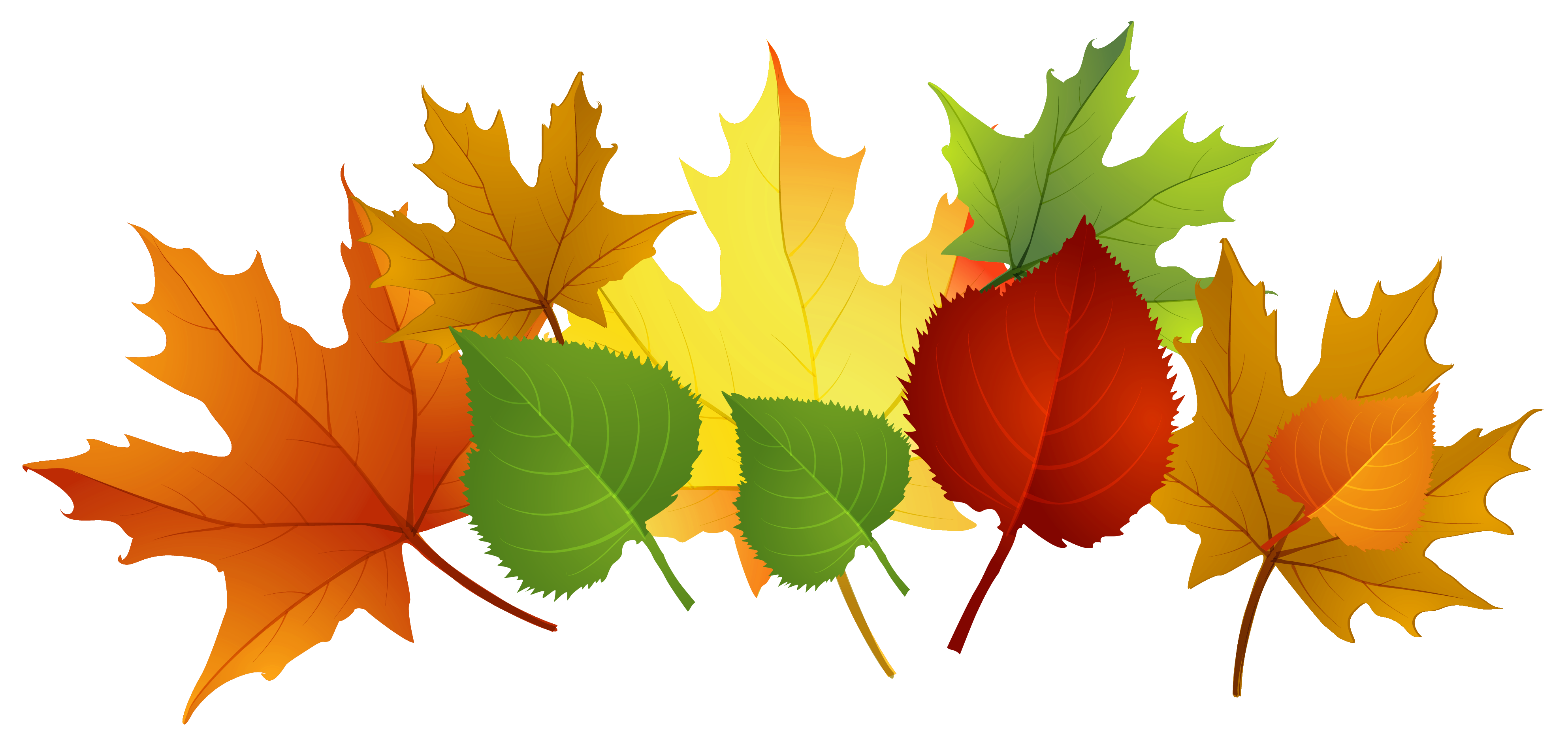 Fall leaf back . Trail clipart green ground