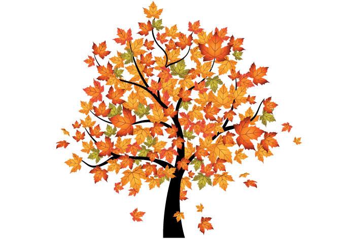 clip art clipartlook. Clipart fall autumn tree