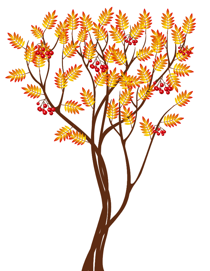 Clipart fall autumn tree. Transparent png image gallery