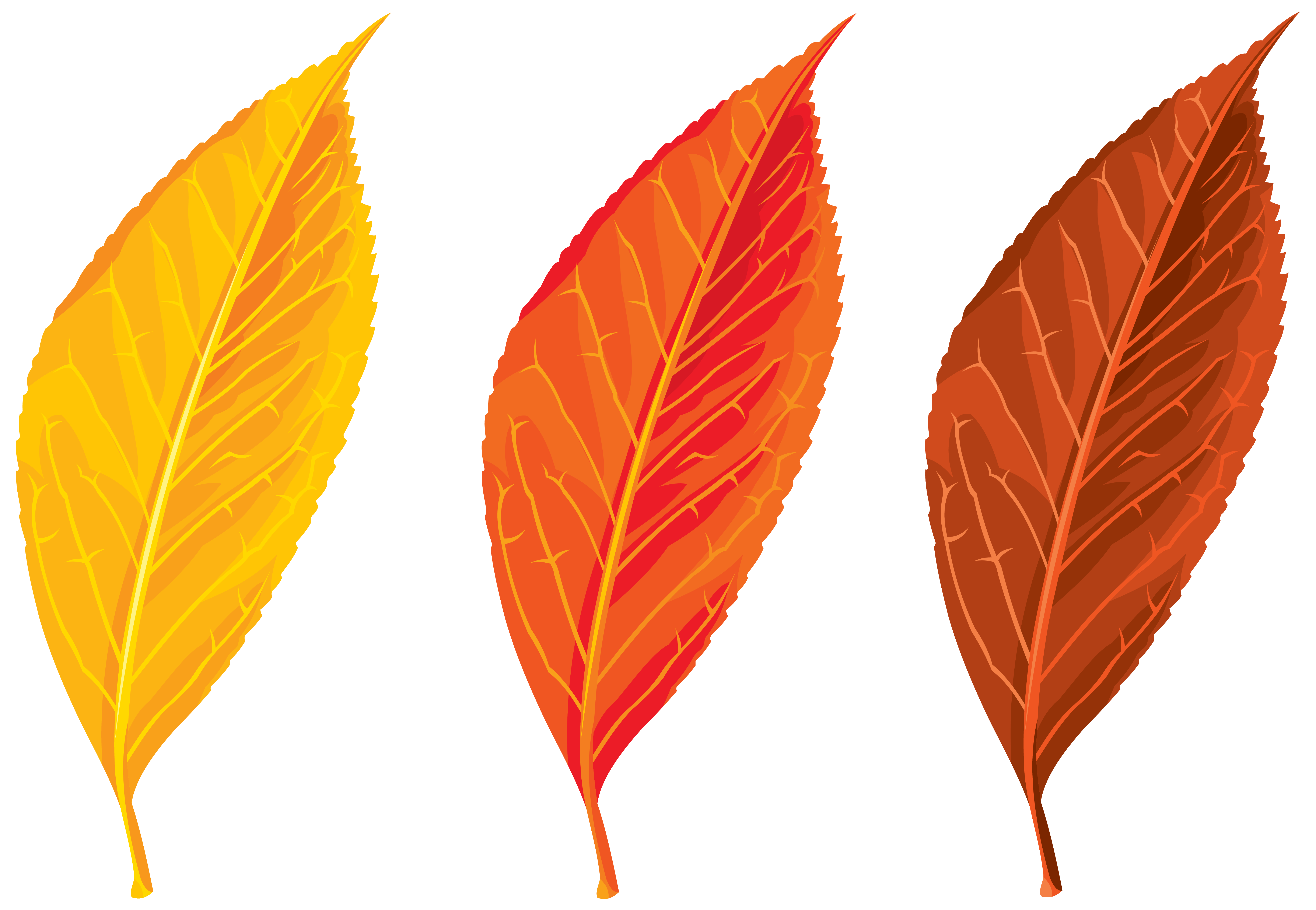 Download autumn free png. Winter clipart spring