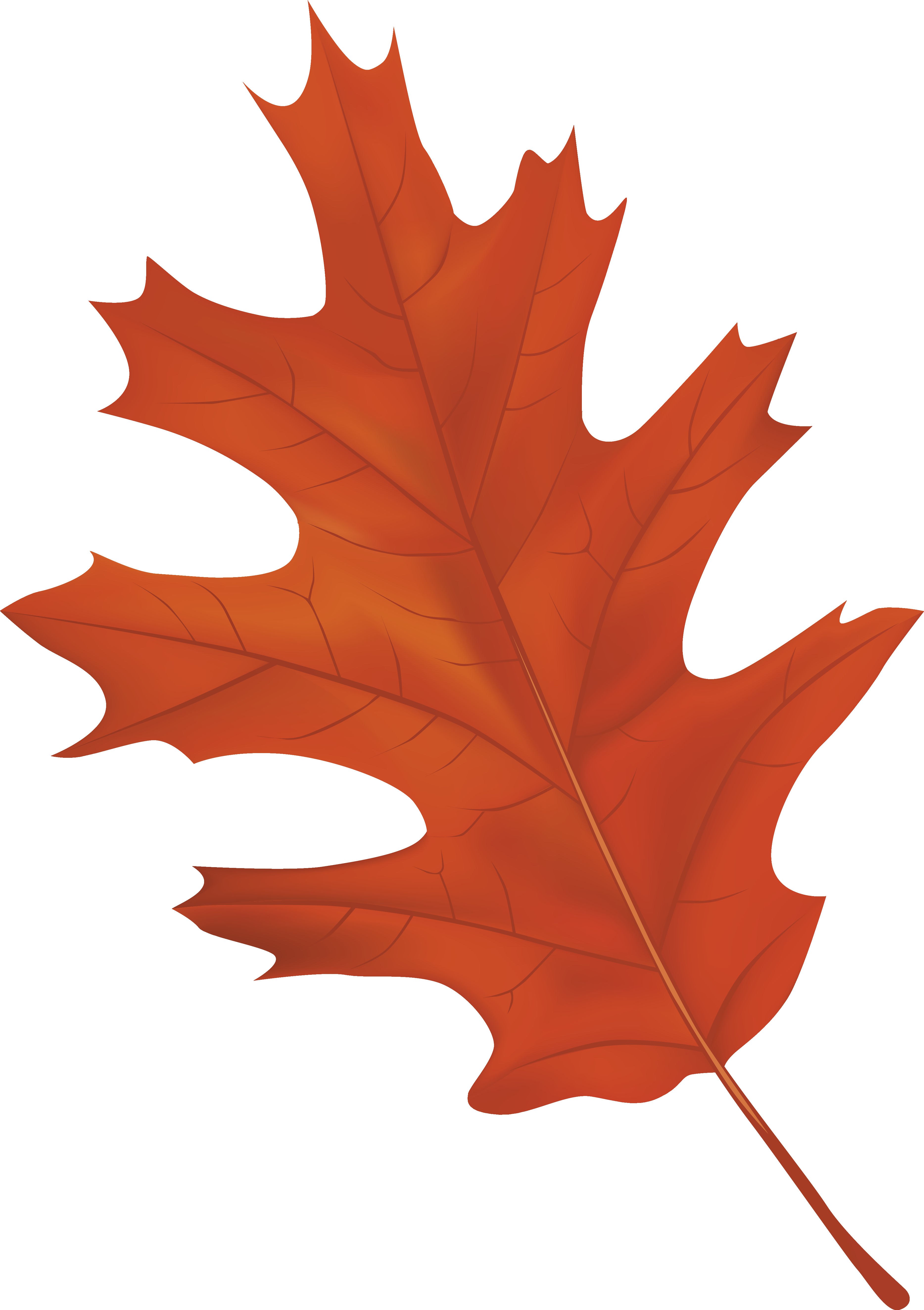 Clipart fall deciduous tree. Brown autumn leaf png