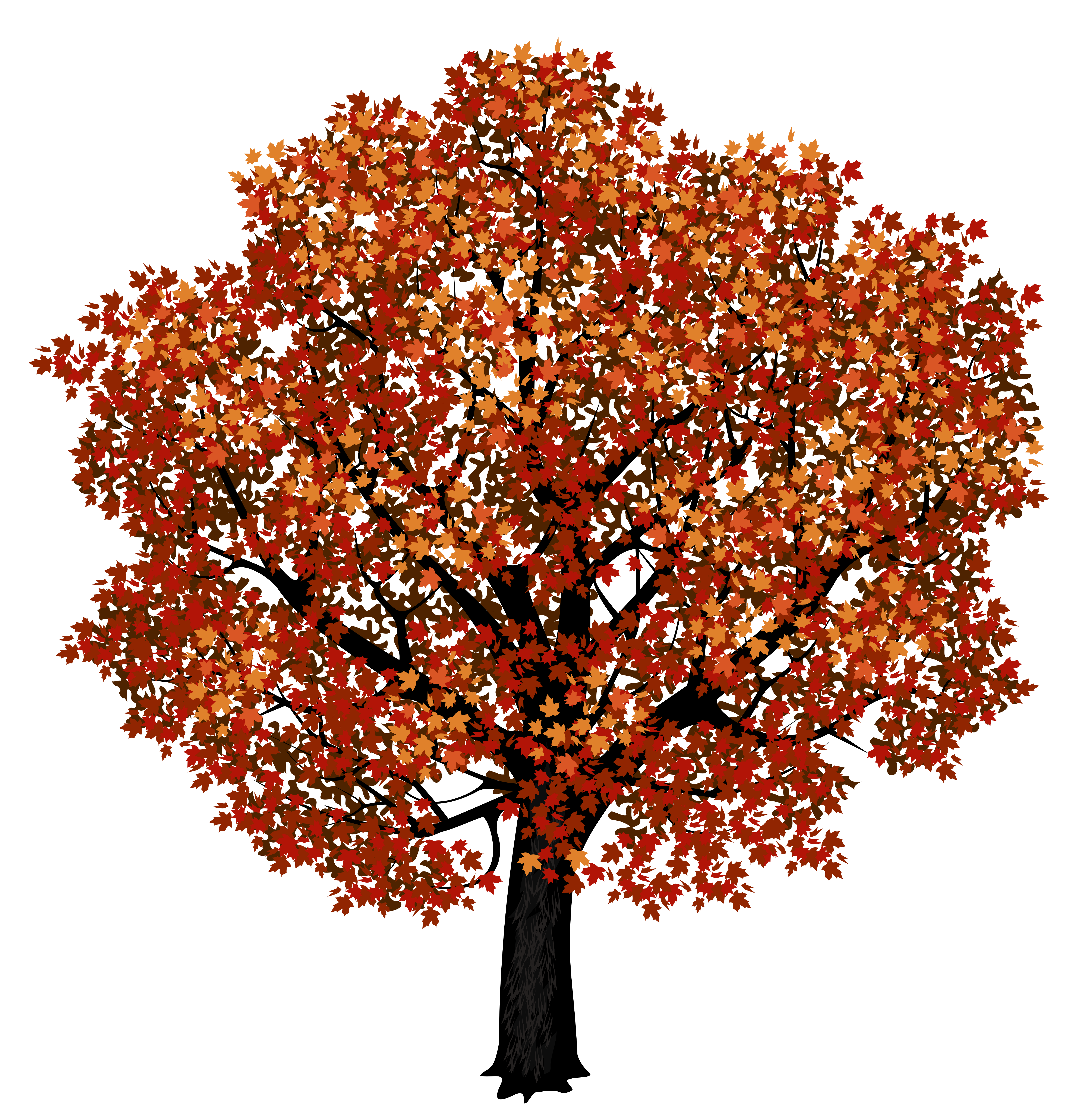 Red maple tree png. Hydrangea clipart high resolution