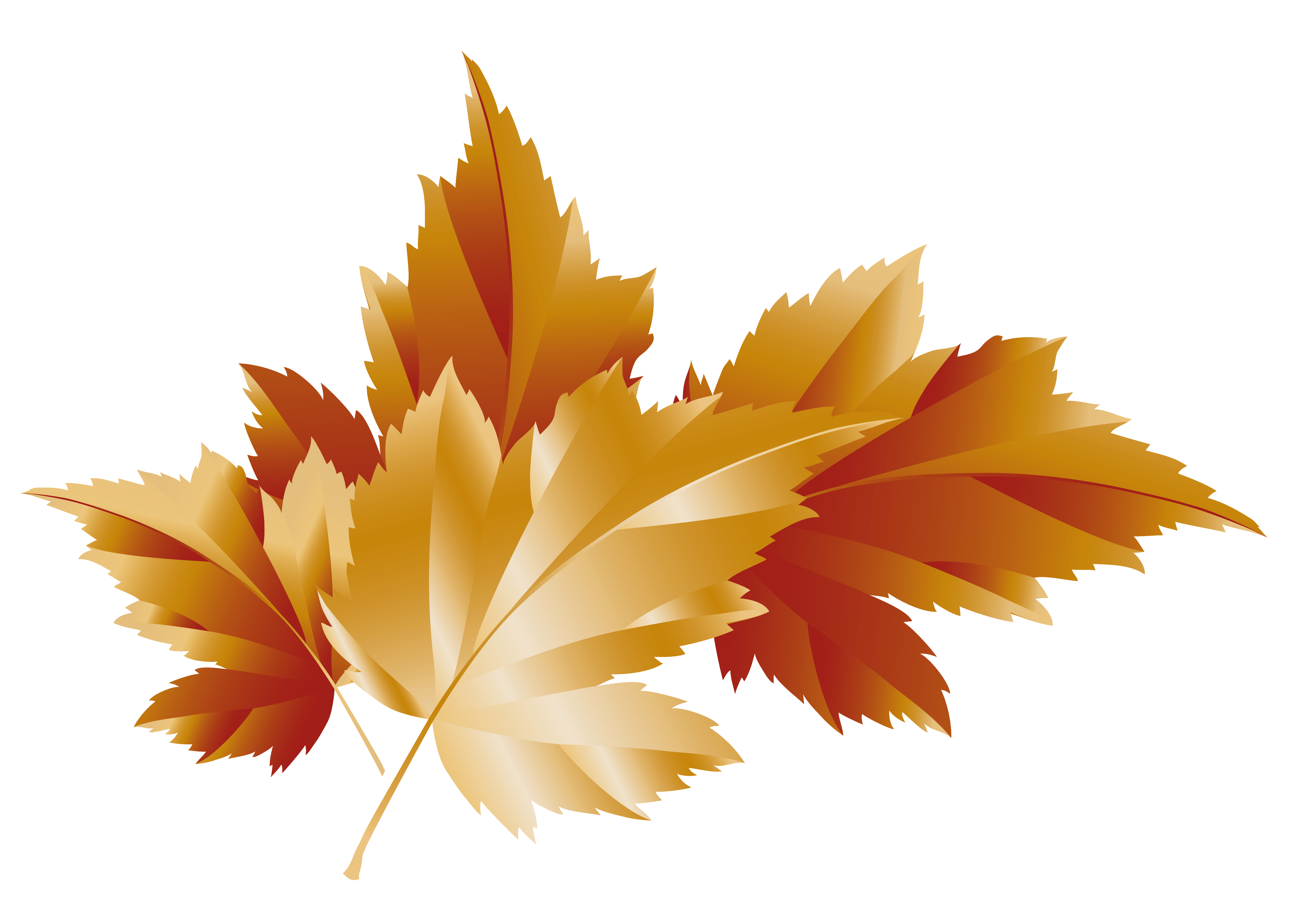 Leaf clipart transparent background.  collection of fall